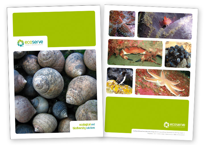 EcoServe brochure design cover