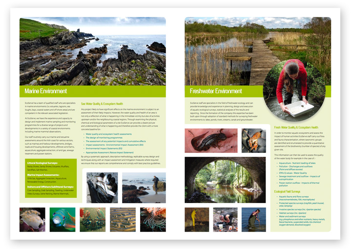 EcoServe brochure design layout 3